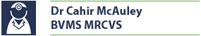 Name plate for Dr. Cahir McAuley, BVMS MRCVS Veterinary Surgeon