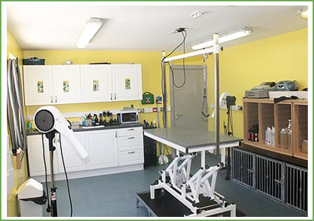 The grooming parlour at Ballyharvey grooming facility